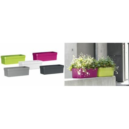 emsa blumenkasten aqua plus city b 740 mm wei 514320 bei g nstig kaufen. Black Bedroom Furniture Sets. Home Design Ideas