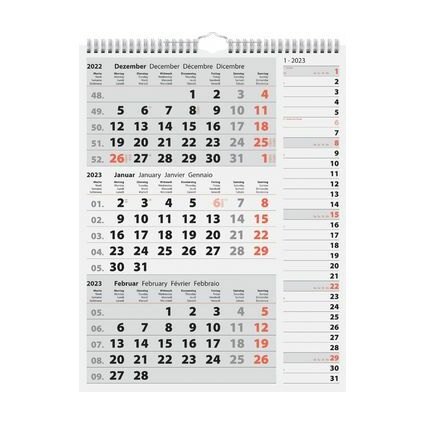 rido idé Wandkalender 3-Monatskalender Kombi Planer 3, 2022